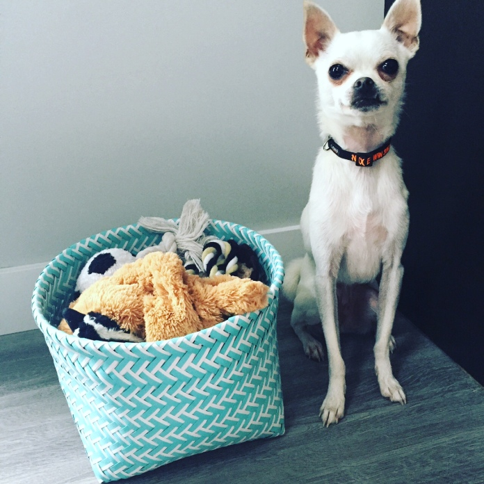 new toy basket
